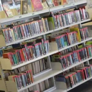 Accelerated Reader categorised non-fiction